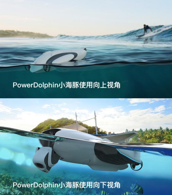 小海豚使用向下视角