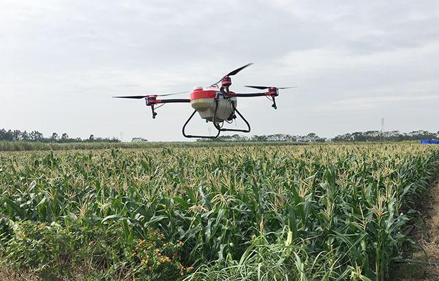 玉米植保用上无人机