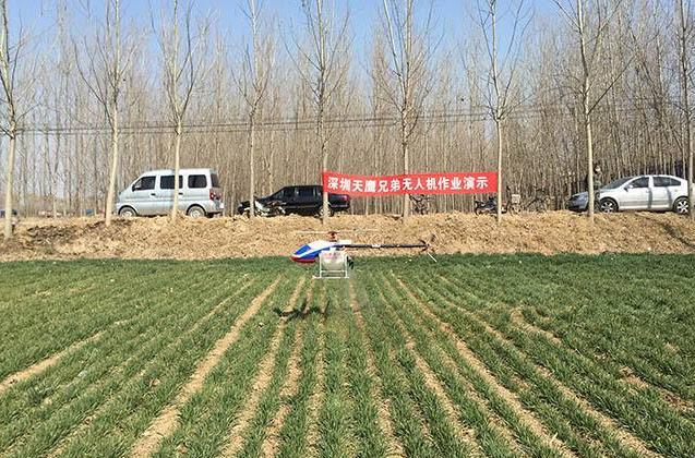 无人机喷洒除草剂