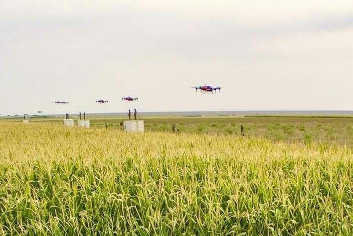 植保无人机现在都能够实现无电无药反航、断点续航,规划路线自动喷洒