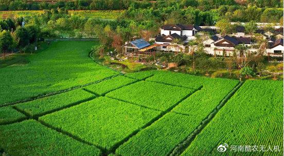 发展现代化农业