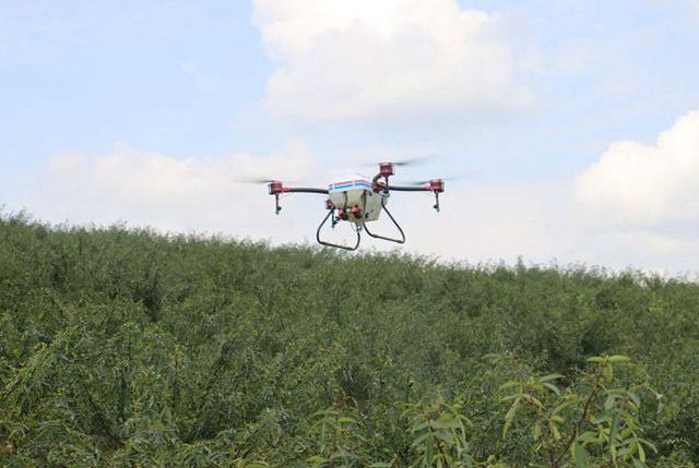 用无人机计划在村里撒药1000亩