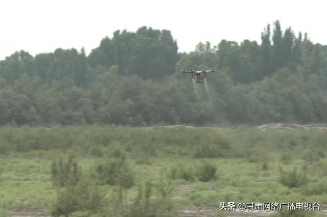 植保无人机防治公益林病虫害插图8