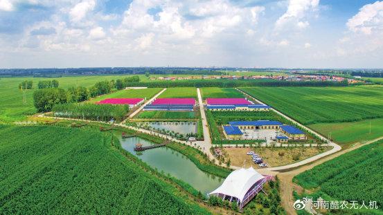 加快推进农业农村现代化