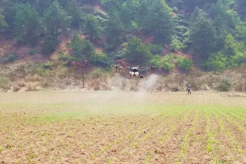 植保无人机用于玉米除草