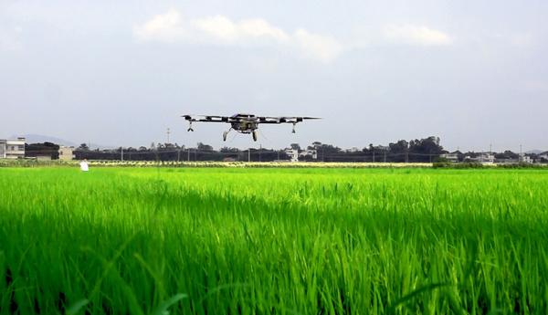 无人机可以从空中识别出杂草