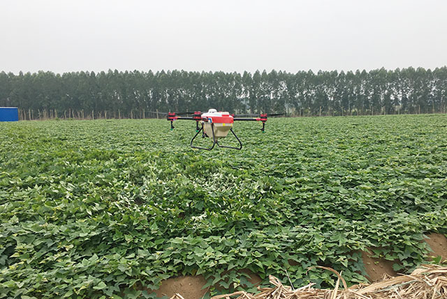 植保无人机红薯地喷洒农药防治虫害