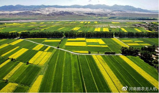 农业向现代农业转变的关键时期