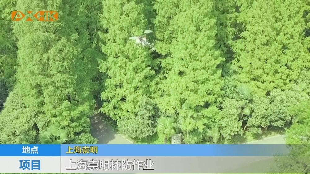 无人机林业病虫害防治 卓翼农服在行动