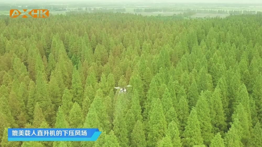 单旋翼油动无人机在林业病虫害防治领域的优势