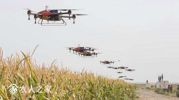 植保的无人机有电动多旋翼、电动直升机、油动直升机