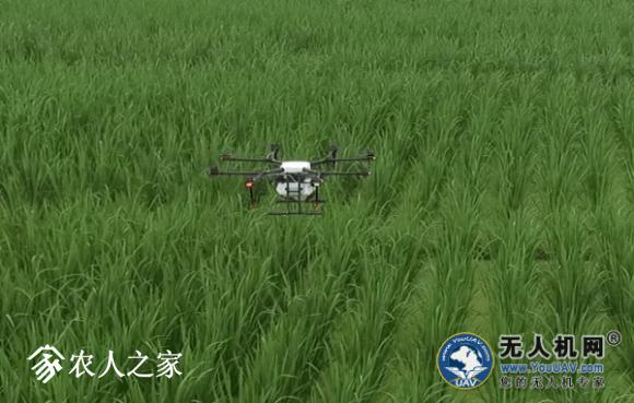 大疆打药无人机MG-1S测试报告