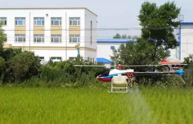 桦川县植保无人机为水稻保驾护航