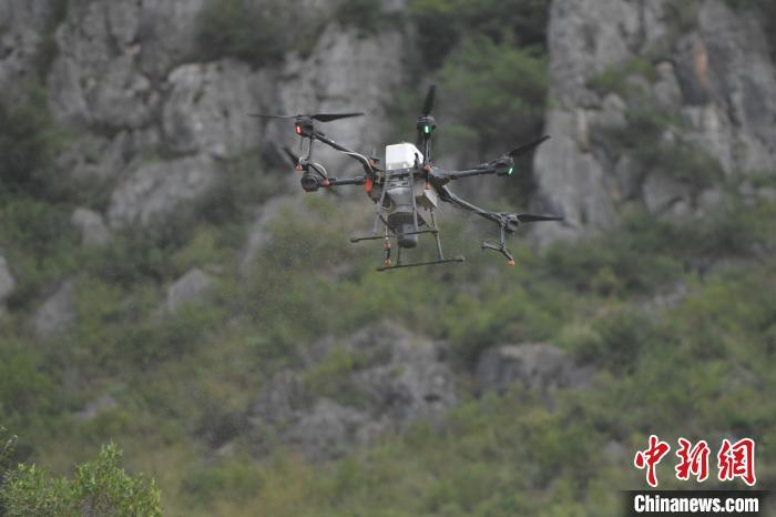 图为无人机进行飞播。