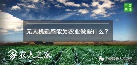 深度解析无人机遥感在农业领域的5大应用
