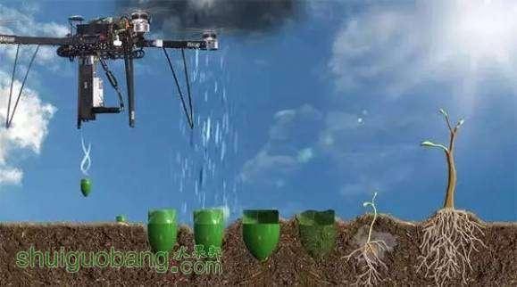 台多轴无人机可以将种子喷射到特定或理想的种植地点