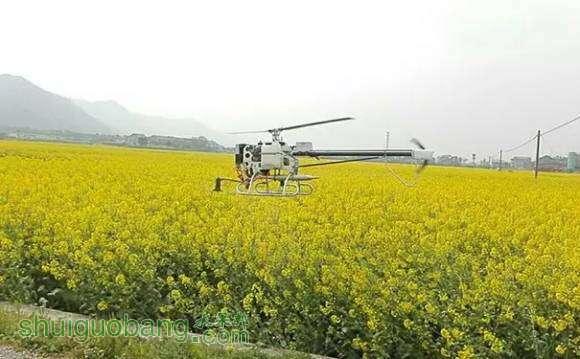 详解植保无人机飞防服务团队作业流程