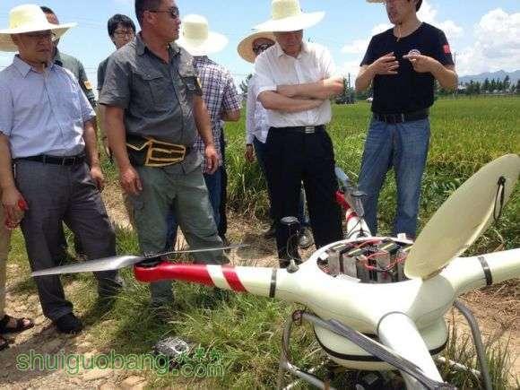 20万元一架的无人机打农药用起来效果太好啦