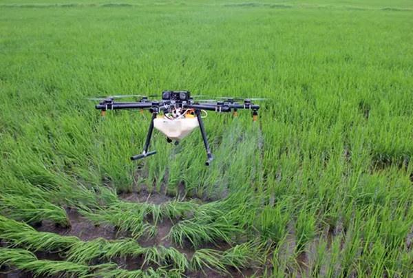 植保无人机喷农药,让不少农民尝到了效率高的甜头。