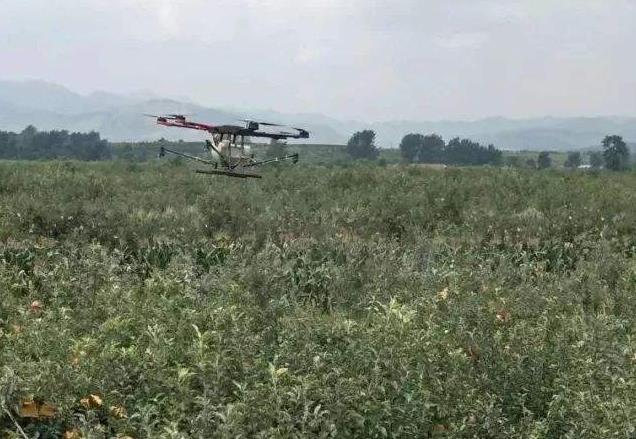 ,无人机喷洒农药
