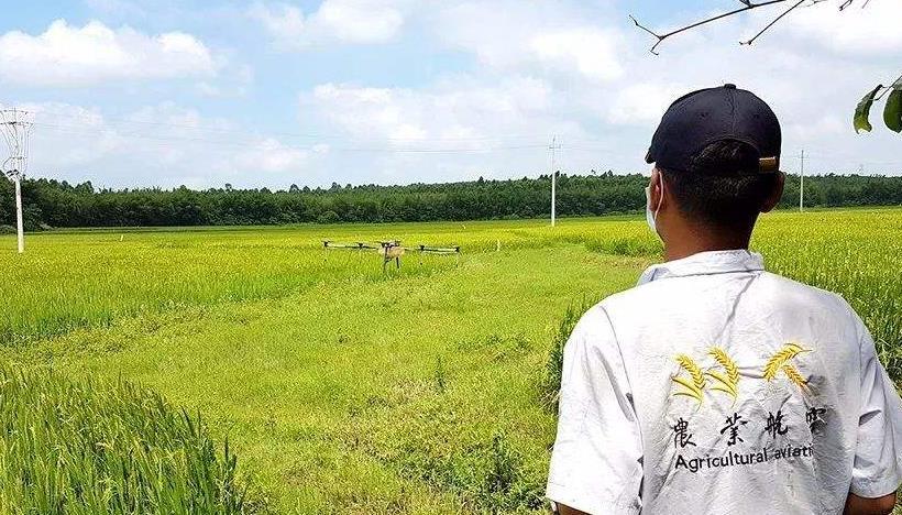农业植保无人机驾驶员
