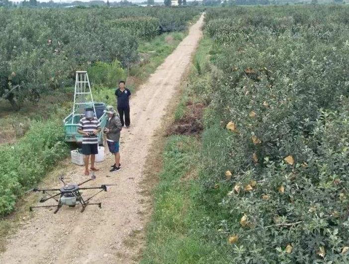 果农们对无人机作业效果