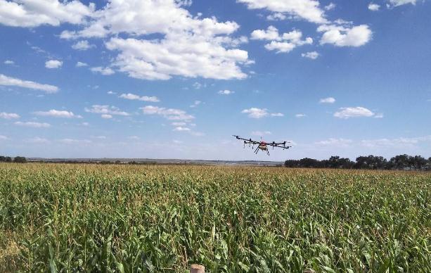 植保无人机在玉米田除草上的应用