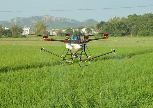 小麦水稻这种密集种植的低杆作物更适合植保无人机作业