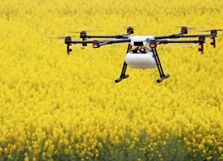 """无人机能实现人机分离,喷洒更均匀,能减少农药对人体和土壤的危害。"""""""