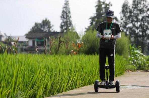 水稻实地飞防项目比赛前绘制飞防地块的范围