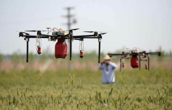 无人机搭载一定容量的安倍药液在树林上方及社区内进行喷施作业