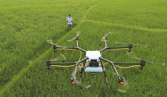 农业转型升级背后人才稀缺难题待解