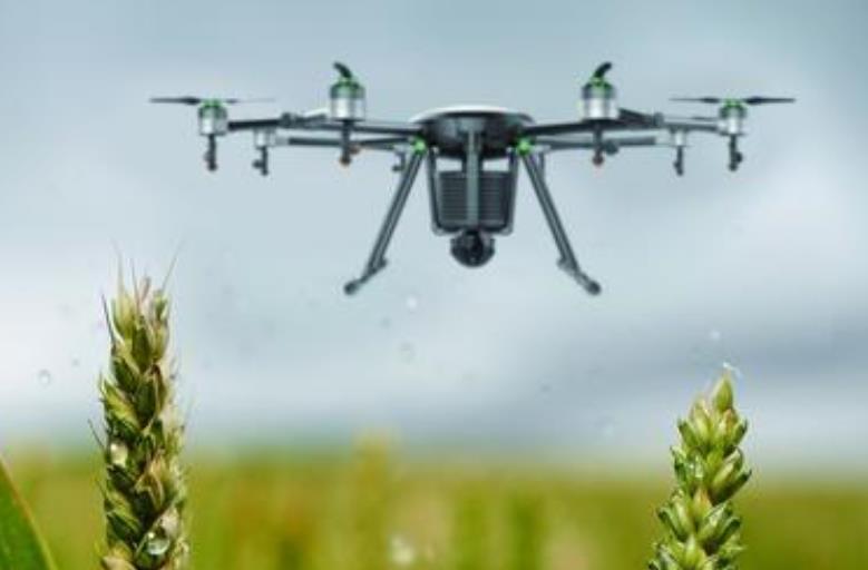 张朝阳:无人机将很快普及,融入直播发展