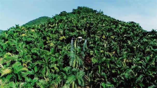 植保无人机的应用?解锁中国无人机农业黑科技
