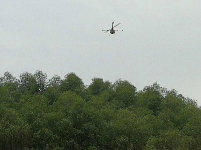 四川夹竹县森林油桐尺蠖病虫害统防统治,采用植保无人机TY-787进行飞防作业。
