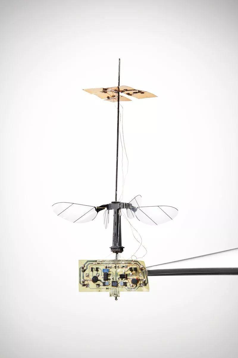 RoboBee X-Wing。只有几厘米大小的飞行器