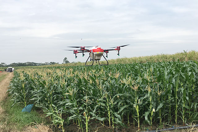 植保无人机高效的植保作业方式深受当地农户的欢迎。