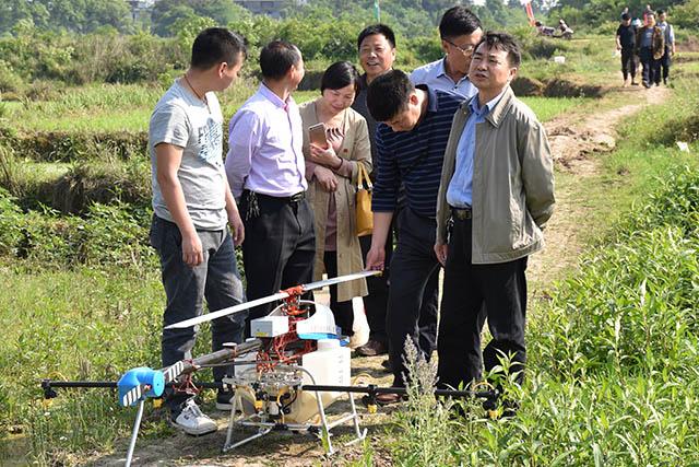 吉安县利用植保无人机统防统治水稻病虫害