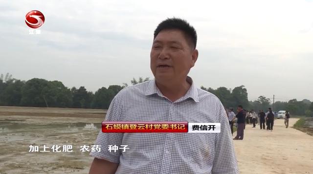 植保无人机进行水稻直播