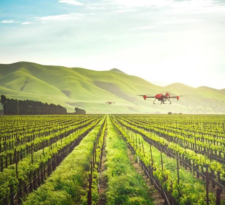 阿里云和极飞科技协力解决农村劳动力难题