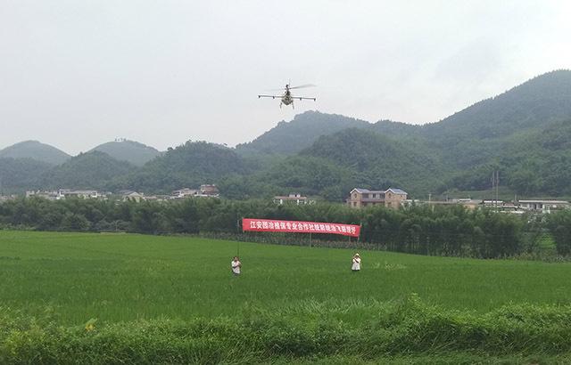 江安县植保无人机统防统治水稻病虫害