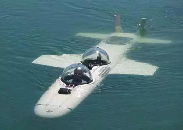 潜水飞机模仿一些鸟类潜水的动作