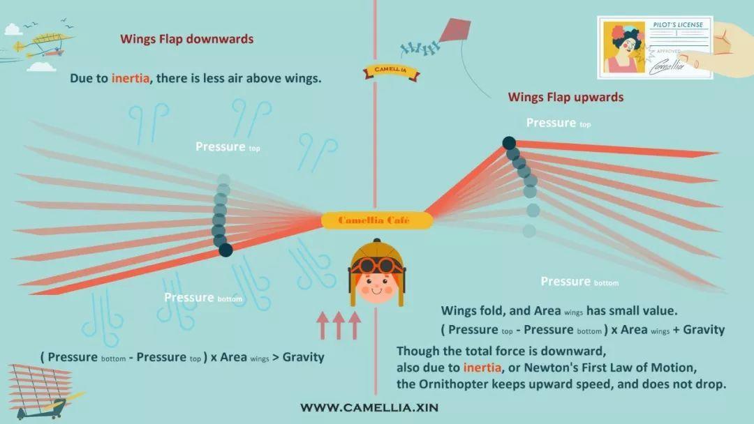扑翼仿生飞行器发展进展