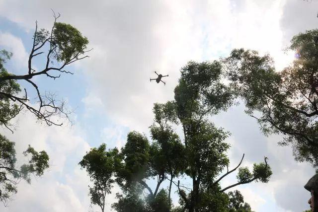 珠海警备区利用无人机保障手榴弹实弹投掷训练。