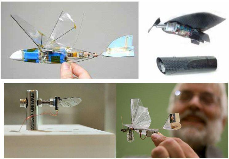 微小型扑翼飞行器典型代表