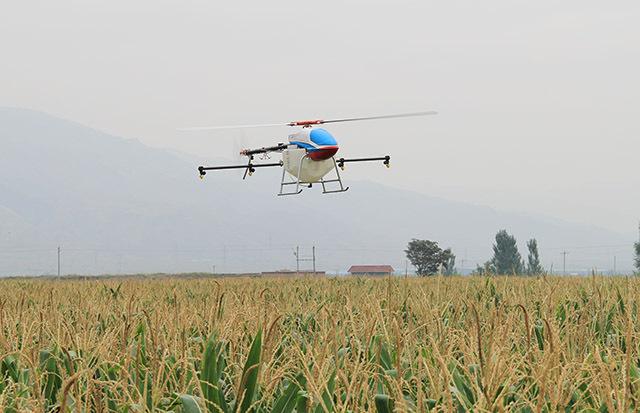 植保的主要时间:每年4月份对早稻、中稻植保。