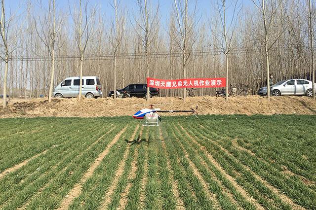 植保无人机喷洒除草剂作业