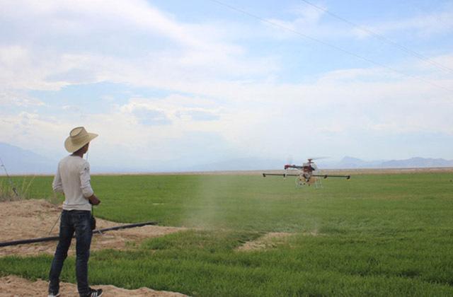 小麦除草剂飞防作业注意事项