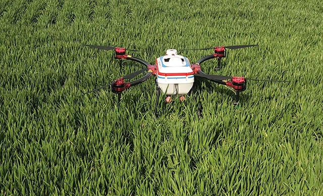 拔节期后不建议植保无人机喷施除草剂