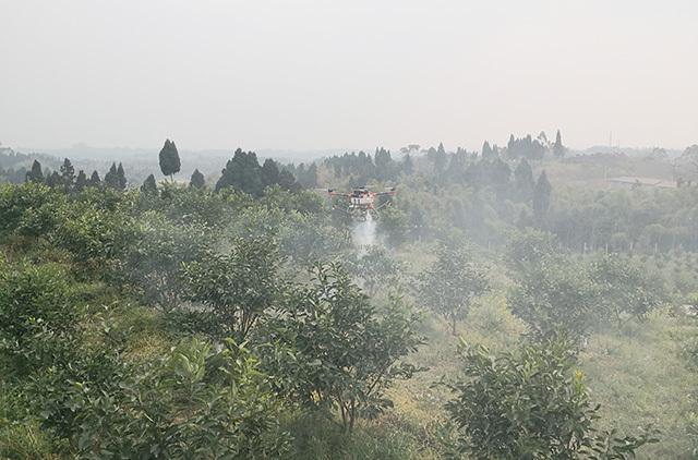 在乐山市井研县,一台植保无人机缓缓升空